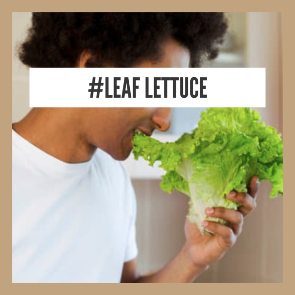 Health Benefits Of Leaf Lettuce